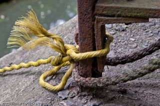 Rope and rust, Muddy River 2009