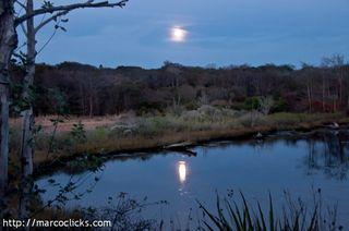 Full moon rising, Woods Hole, 2011