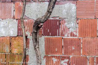 Garage wall, Kurkman's parking lot, Brookline, 2012