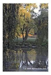 Halls_pond_scenic_1_1_1